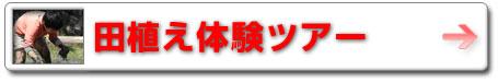 09spsu_taue.jpg